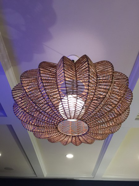 Love the new light fixture by....