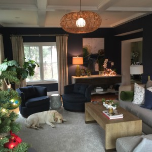 Family Room After (with sleepy designer dog)